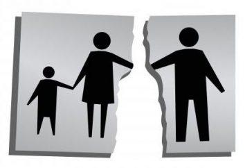 ¿Cuánto cuesta una madre soltera para apoyar a un niño? Tipos de pagos y beneficios
