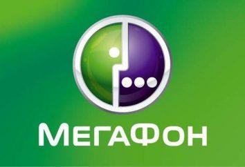 """Como chamar o operador """"Megafone"""": dicas"""