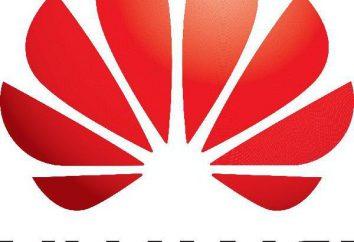 Huawei Y5C smartphone: opinie, recenzje, opisy, specyfikacje i ceny