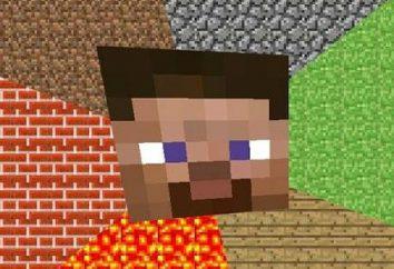 I dettagli su come rimuovere privat in Minecraft