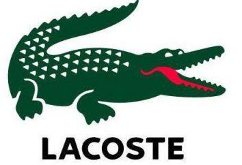 eau de toilette Lacoste Essential esporte dos homens: descrição e classificações de sabor