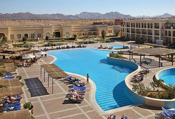 Kiedy jechać do Egiptu, aby mieć dobry odpoczynek?