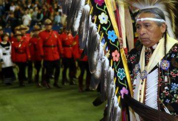 Kanada: die nationale Zusammensetzung der Bevölkerung. Ukrainische Diaspora in Kanada. Völker von Kanada