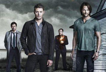 """serie tv """"Supernatural"""": i protagonisti. """"Supernatural"""": una breve descrizione"""