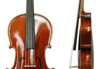 Viola narzędzie i jego historia