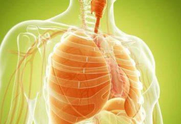 La biopsie pulmonaire: la procédure de nomination, les résultats et les conséquences