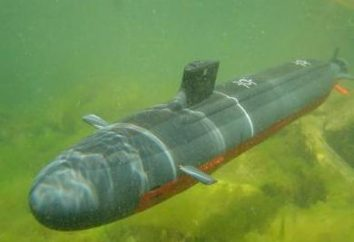 submarinos controlados por rádio para crianças e adultos