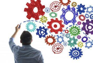 Business Process: Analyse von Geschäftsprozessen. Beschreibung, Anwendung, Ergebnisse