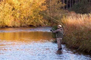 Pêche en Avril. Quand et sur ce qui est mieux pour pêcher?