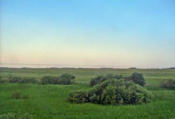 Plains – qu'est-ce? La définition et la description de la différence des plaines chaudes