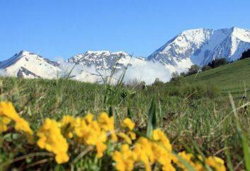 Tsakhvoa – la montagna più alta nel Territorio di Krasnodar