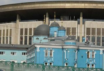 Jaki jest główny meczet w Moskwie? Położenie innych organizacji muzułmańskich