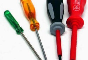 Tipi di cacciaviti: Phillips, piatto, pignoni, indicatore. La selezione di uno strumento per la sua destinazione