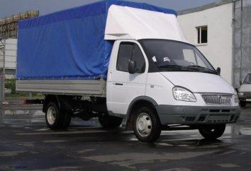 Dlaczego Gazelle cargo jako korzystne dla ruchu mieszkalnych i międzyregionalnej?