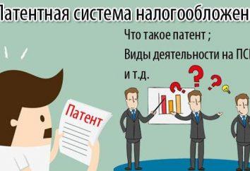sistema di tassazione dei brevetti per i singoli imprenditori: attività, contributi