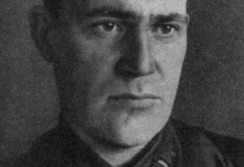 Writer Vadim Kozhevnikov: biografia