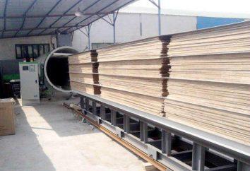 Secagem a vácuo de madeira em câmaras de secagem: tecnologia, características e métodos