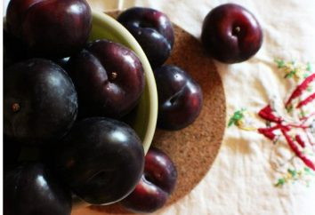 confiture de prune avec du cacao – savoureux régal