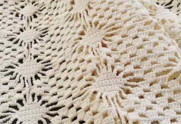Padrão padrão de crochê de aranha: recursos e aplicativos