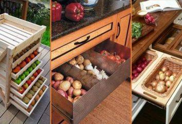 Como armazenar verduras no apartamento, para evitar mosquitos?