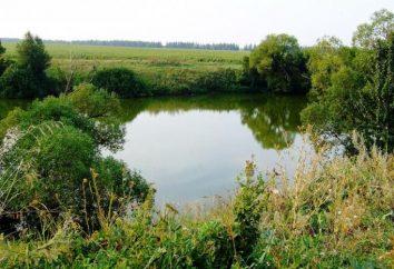 Fluss Hopper – eine Schatzkammer der Natur Russland