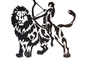 Lion-uomo, donna-Sagittario: compatibilità amore