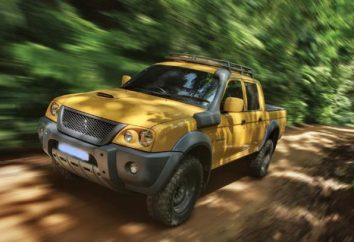 Mitsubishi L200: strojenie za zły stan dróg