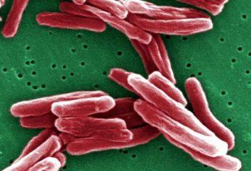 gruźlica płucna rozpowszechniane: objawy i leczenie