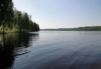 lago Pravdinskoye: Descrição, pesca, foto