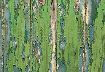 Jak malować ogrodzenia drewnianego? wybierając skład