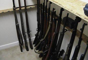 Seguro para pistolas con sus manos. almacenamiento seguro de las armas de fabricación casera