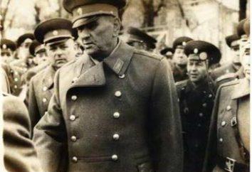 A. A. Grechko, le maréchal de l'Union soviétique: la biographie et la photo