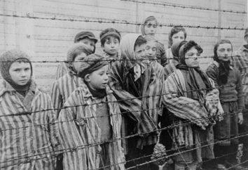 Der Holocaust der Kinder ist das schrecklichste Verbrechen gegen die Menschlichkeit