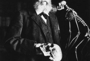 Biogenetycznym prawo Haeckel-Müller