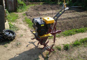 """Motor para el cultivador """"Krot"""": instalación, reparación, sustitución"""