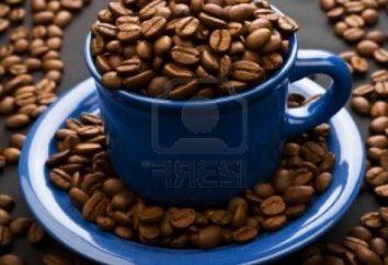 La principale substance contenue dans les grains de café – est la caféine