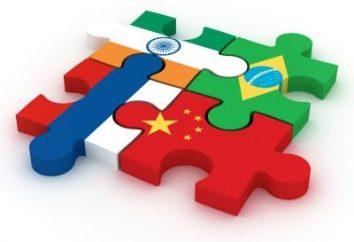 Die BRIC-Staaten – die neue Wirtschaftsordnung der Welt nach der Krise