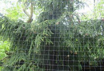 Wie man richtig den Zaun Netting mit seinen eigenen Händen installieren?