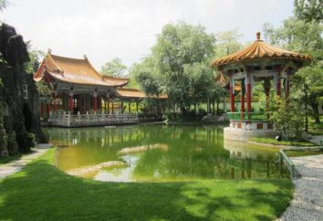 Jardín tradicional china: descripción, tipos y características