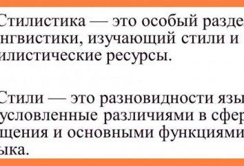 Stylistyka – Stylistyka jest … język angielski. Styl języka rosyjskiego