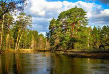 Rio Nerskaya rio em Moscou: a descrição, características, fotos