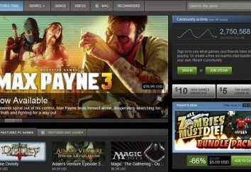 Wie kostenlose Spiele auf Steam zu bekommen. Wie man das Spiel auf Steam installieren