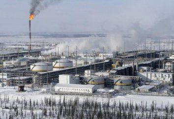 """Onde posso encontrar informações para um emprego no """"Rosneft"""""""