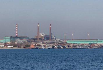 """PJSC """"Taganrog Metallurgical Plant"""": Geschichte, Produktion, Produkte"""
