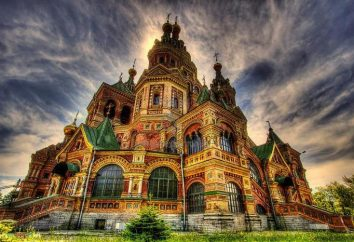Peter e Paul Cathedral (Peterhof): história da aparência, arquitetura e fotos