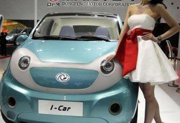 voiture électrique chinoise: une vue d'ensemble, les caractéristiques, les types, modèles et commentaires