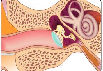 Niedosłuchem odbiorczym: Przyczyny i leczenie