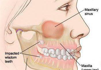 morsure orthognatiques: symptômes, typique