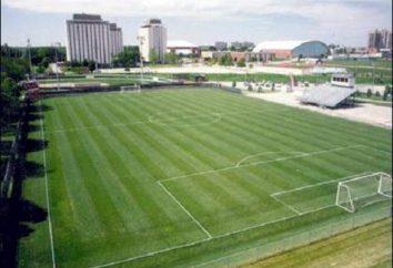 campo de fútbol tiene un diseño especial y un determinado tamaño