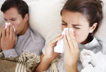 Comment guérir rapidement la grippe à la maison? Remèdes populaires. médicament